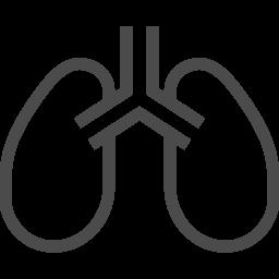 肺のアイコン素材 2 アイコン素材ダウンロードサイト Icooon Mono 商用利用可能なアイコン 素材が無料 フリー ダウンロードできるサイト