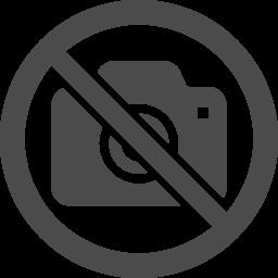 撮影禁止アイコン1 アイコン素材ダウンロードサイト Icooon Mono 商用利用可能なアイコン素材が無料 フリー ダウンロードできるサイト
