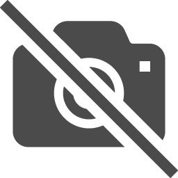 No Cameras Icon 2 アイコン素材ダウンロードサイト Icooon Mono 商用利用可能なアイコン素材が無料 フリー ダウンロードできるサイト