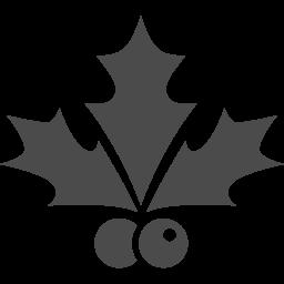 ヒイラギの葉アイコン4 アイコン素材ダウンロードサイト Icooon Mono 商用利用可能なアイコン素材 が無料 フリー ダウンロードできるサイト